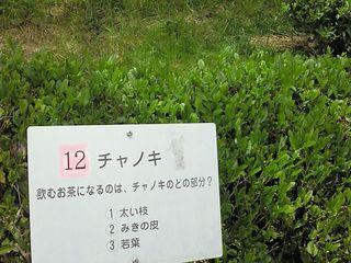 hamanako10.jpg