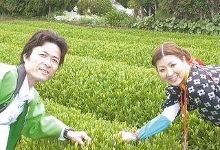 ochanosato1.jpg