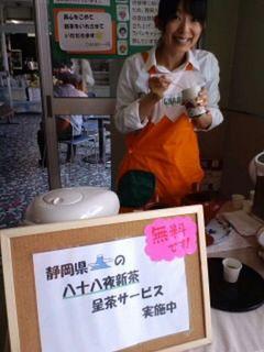 fujinobori2.jpg
